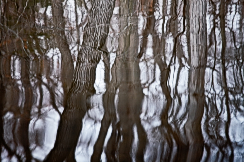 Winter-Lake-Reflections-With-Light-And-Color-2013-Web